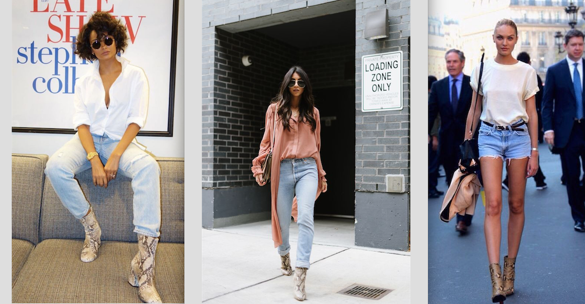 the python boot trend
